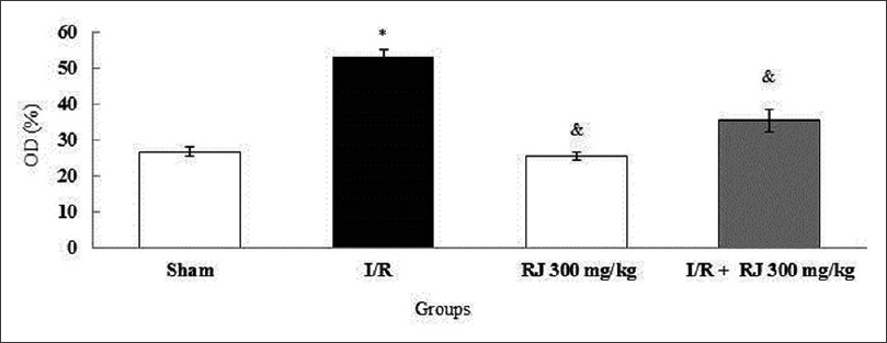 Figure 7: Effects of Royal Jelly and ischemia/reperfusion on nitrite oxide level. *: Significant different compared to the sham group (<i>P</i> < 0.05). &: The significant difference compared to ischemia/reperfusion group (<i>P</i> < 0.05)